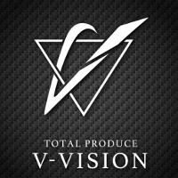 V-VISION