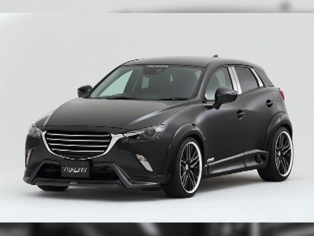ARNAGE CX-3